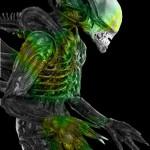 Alien előzmény